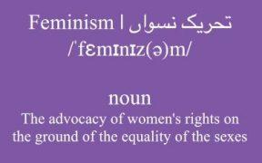 Feminism Means