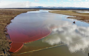 Red Diesel oil spill seen on top of a river